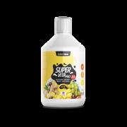 CZECH VIRUS SuperVita PRO V2.0 - 500 ml ovocný mix