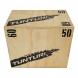 Plyometrická bedna dřevěná TUNTURI Plyo Box na ležato
